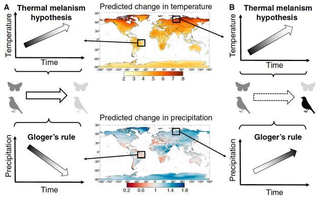 温度与颜色变化表