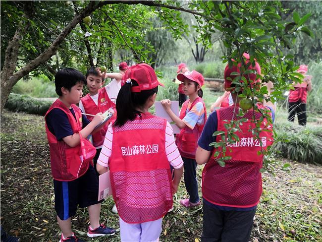 生态果园果树种类调查