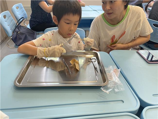 学习使用解剖工具